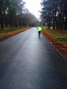 curragh run