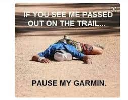 pause-my-garmin